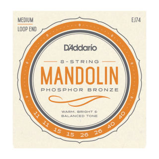 EJ74 Mandolin, Phosphor Bronze, Medium, 11-40